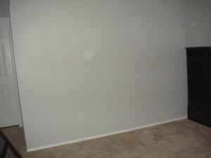 blank canvas.