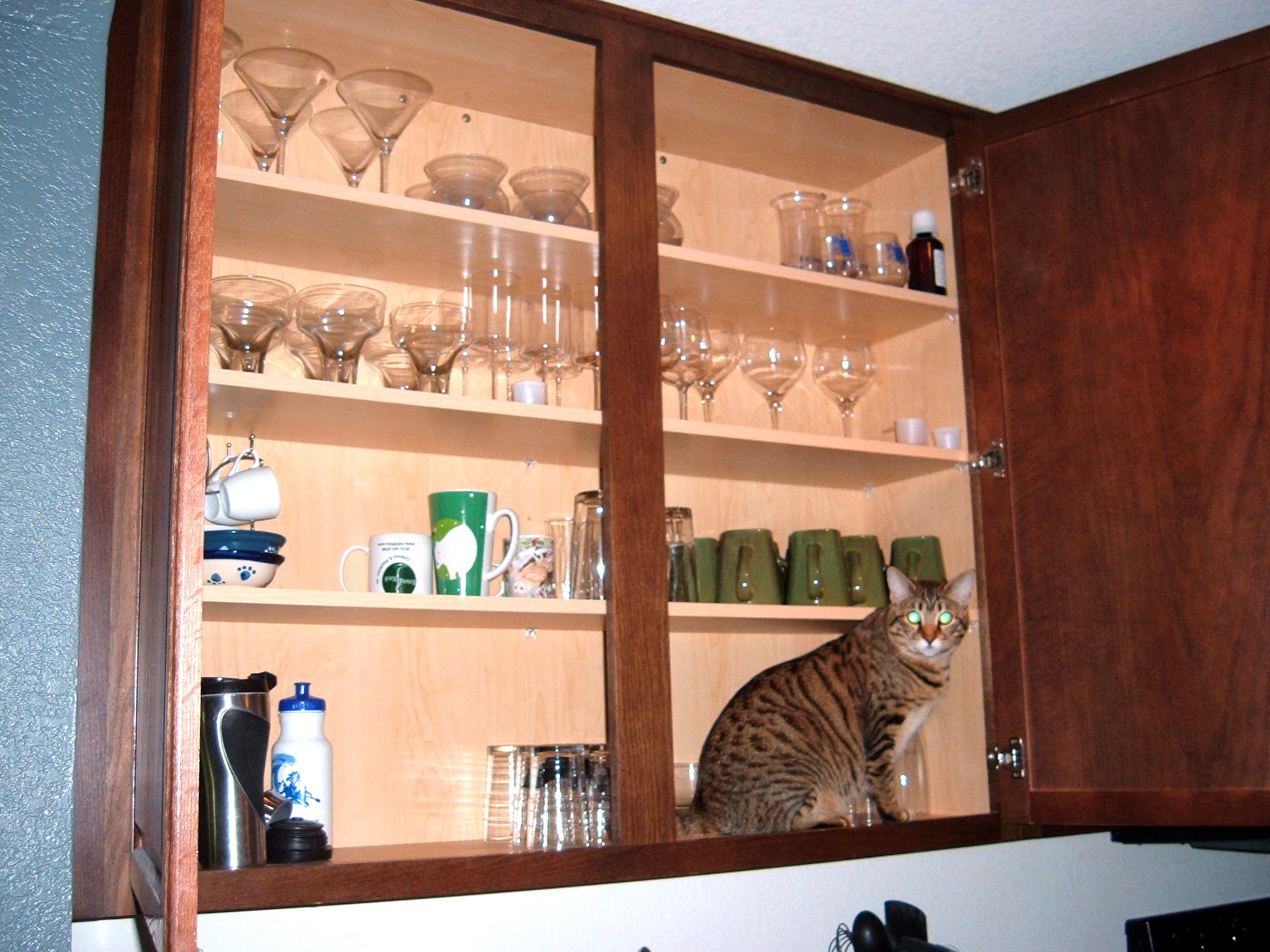 Open Kitchen Cabinet Door Viewing Gallery